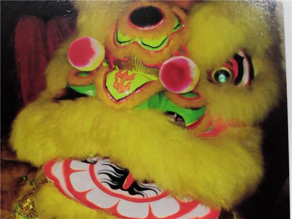 黄色南狮头(比赛用羊毛)